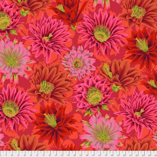 Kaffe Fassett Spring 2019 Collective Cactus Flower PWPJ096-Red