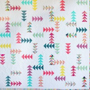 Every which way Quilt Pattern
