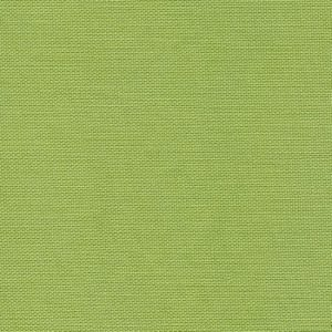 Tilda Devonstone Collection Light Green Fabric DV102