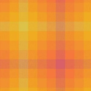 Alison Glass Kaleidoscope Stripes & Plaids A9541MARMALADE