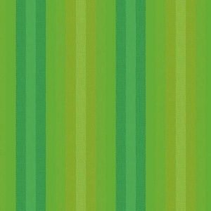Alison Glass Kaleidoscope Stripes & Plaids A9540LICHEN