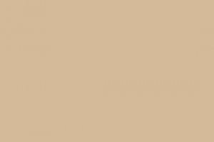 Pure Solids Fabric Vanilla Custard PE-486